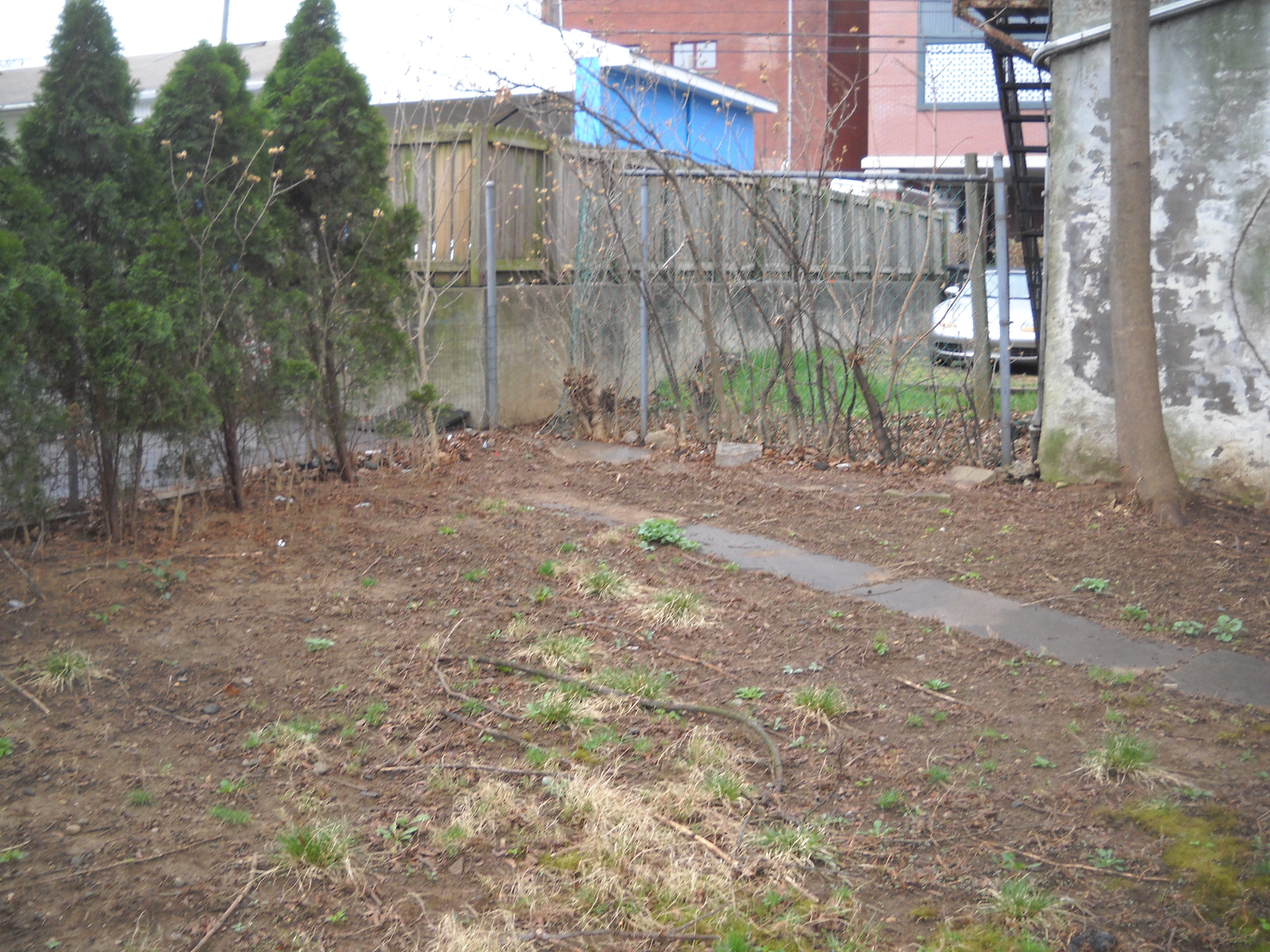Landscape Ideas For Dirt Yard